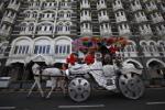 تقاضای ژاکلین فرناندس برای وضعیت بهبود اسب های بمبئی