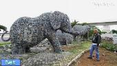 فیل های سنگی