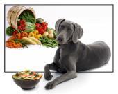 سبزیجات برای سگ ها