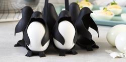 این یک جا تخم مرغی حذاب مدل پنگوئن